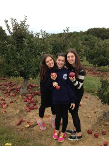 From left to right: Shira, Lauren and Jennifer spending the day apple picking!