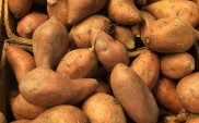 Fall for Sweet Potatoes in November