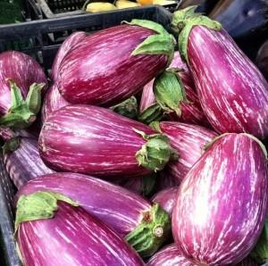 Farmers market - eggplant
