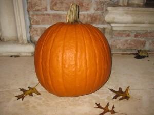pumpkin-3-300x225
