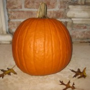 Pumpkin: More Than a Decoration