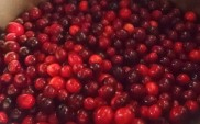 National Cranberry Month